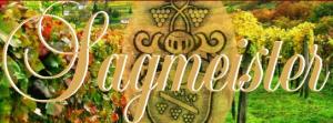 logo_sagmeister